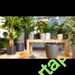 Gardena automata Öntöző szobanövények