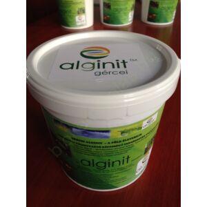 Alginit