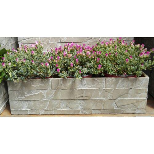 Balkonláda Kőből MIRO 50cm