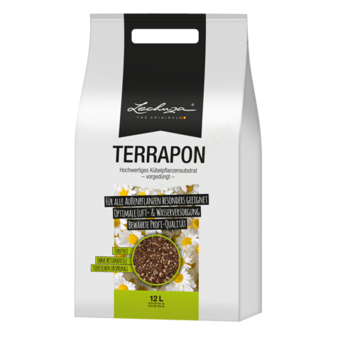 Lechuza terrapon