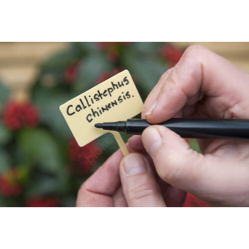 10db Jelölőtábla tollal