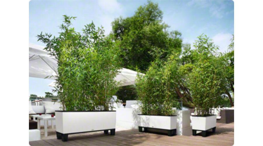 lechuza trio cottage teraszl da. Black Bedroom Furniture Sets. Home Design Ideas